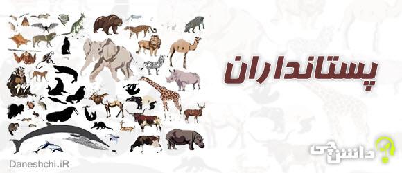 درمورد پستانداران